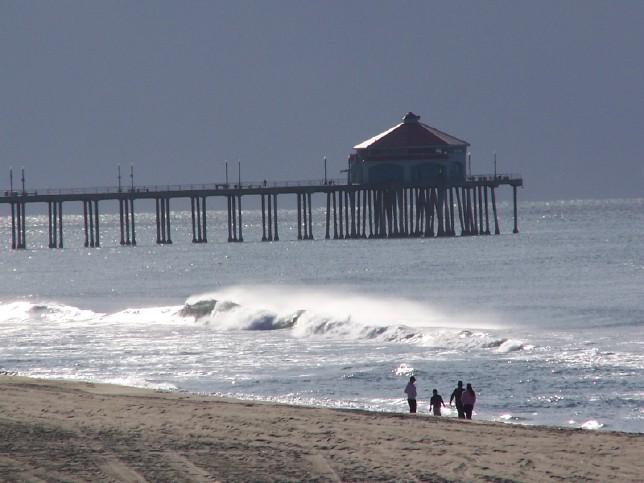 Surf Fishing for California Halibut | Fishthesurf com