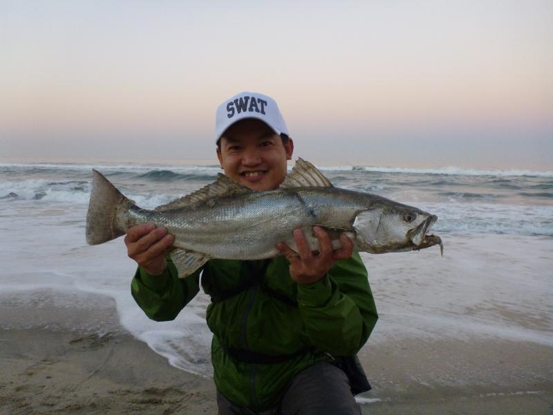 Fishthesurf.com – California Surf Fishing- A Light Line ...