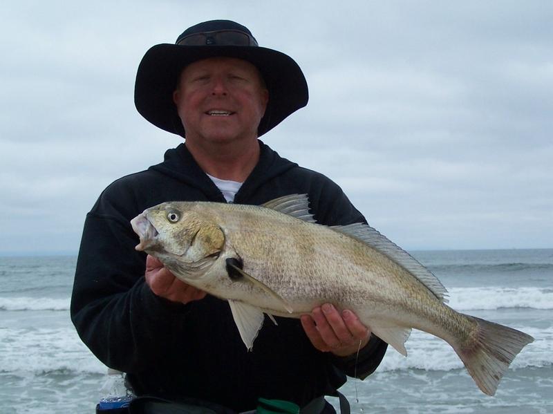 Surf Fish Fishthesurf Com California Surf Fishing A Light Line Revolution With Bill Varney