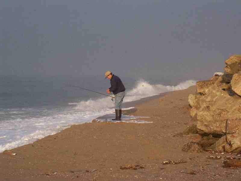 Gallery california surf fishing a for Surf fishing northern california
