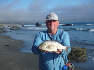 PERCH BRIAN PARKER AT SAN SIMEON