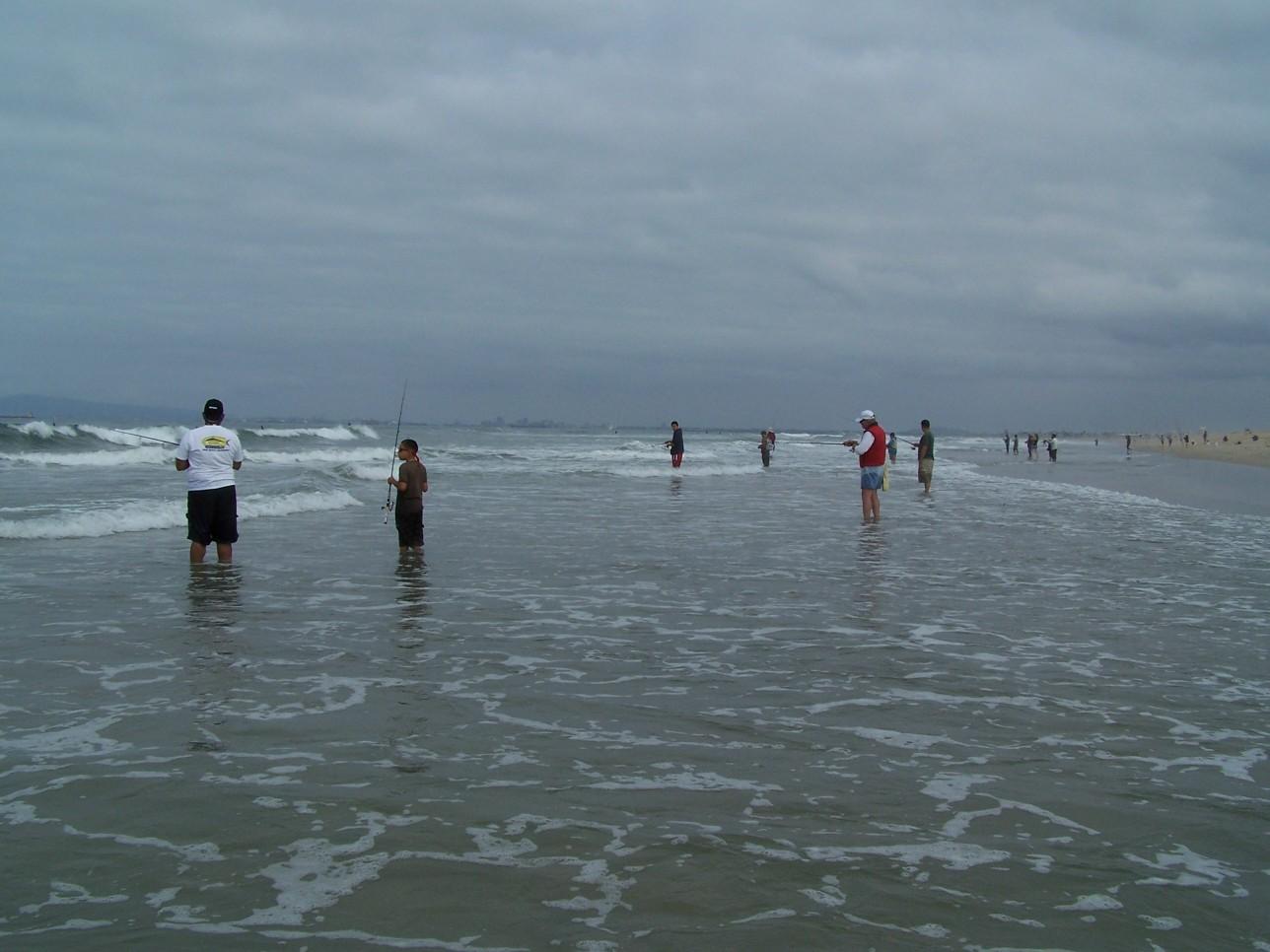 Seminars california surf fishing a for Surf fishing northern california